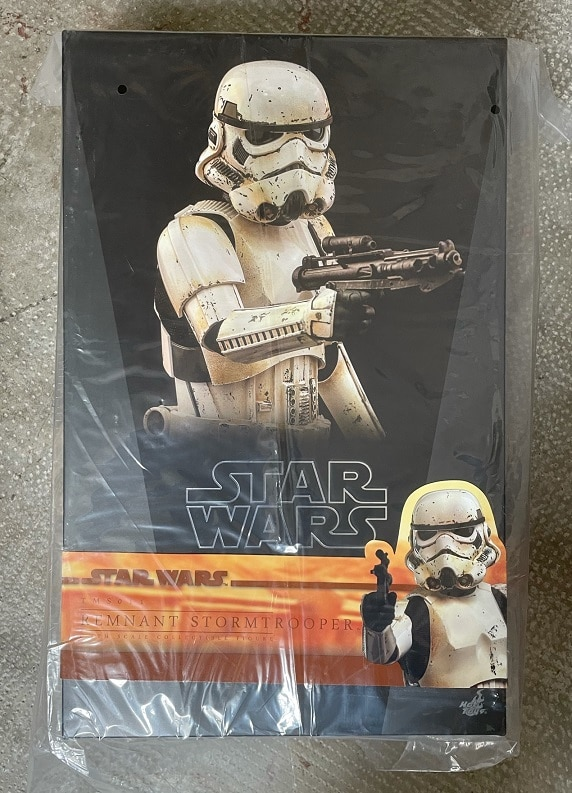 REMNANT STORMTROOPER 1/6TH SCALE FIGURE TMS011 - STAR WARS THE MANDALORIAN - HOT TOYS